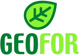 Geofor S.P.A.